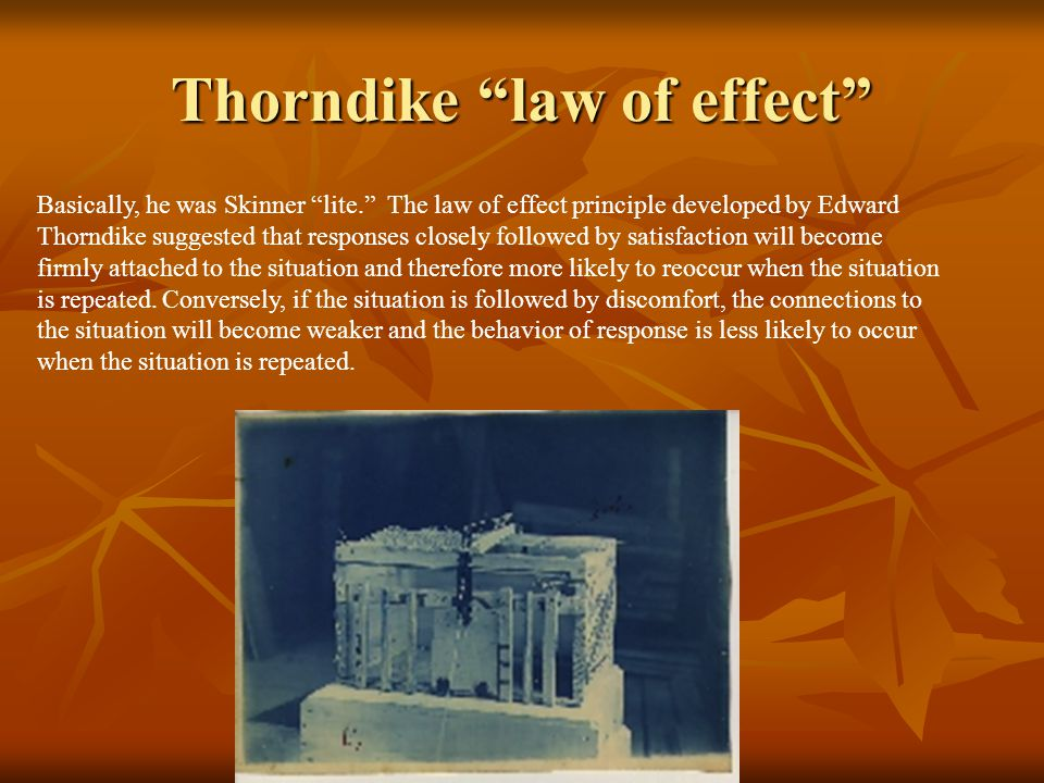 Thorndike law of effect Basically, he was Skinner lite. The law of effect principle developed by Edward Thorndike suggested that responses closely followed by satisfaction will become firmly attached to the situation and therefore more likely to reoccur when the situation is repeated.