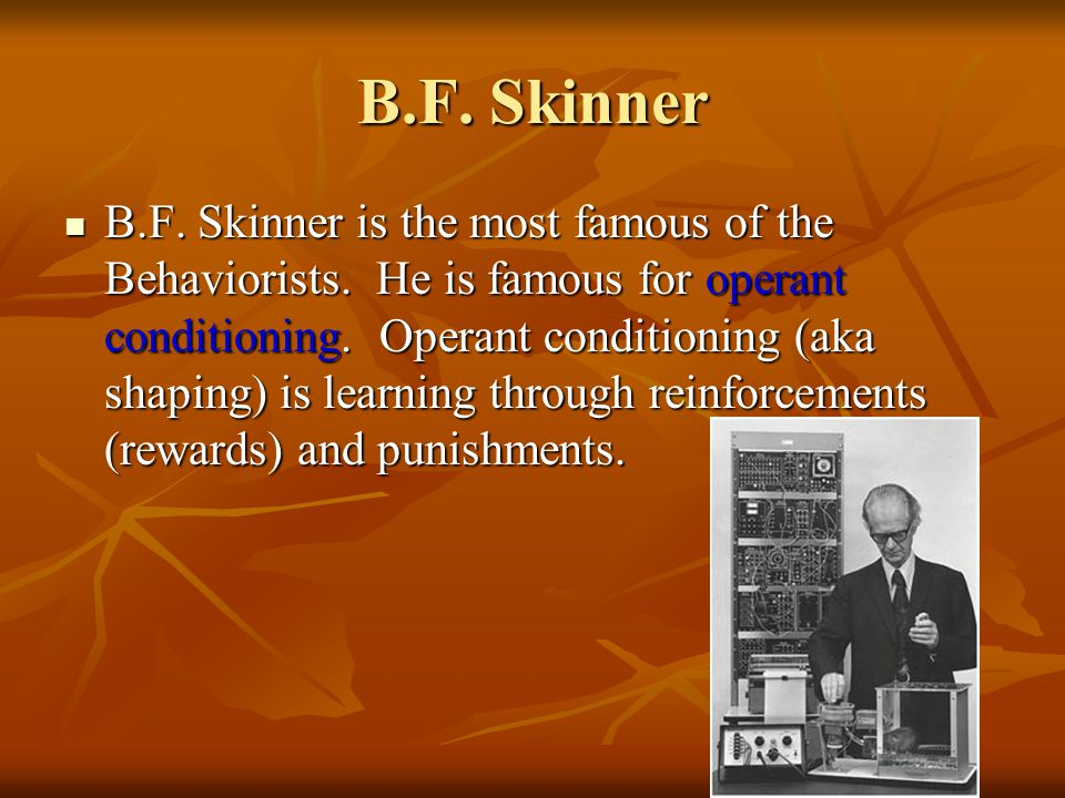 B.F.Skinner B.F. Skinner is the most famous of the Behaviorists.