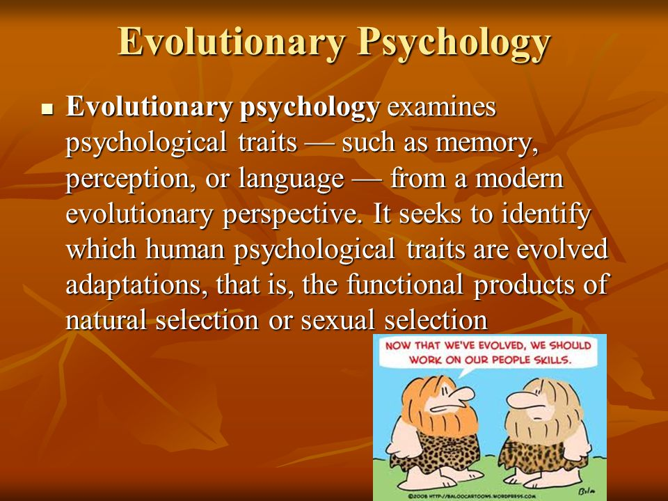 Evolutionary Psychology Evolutionary psychology examines psychological traits — such as memory, perception, or language — from a modern evolutionary perspective.
