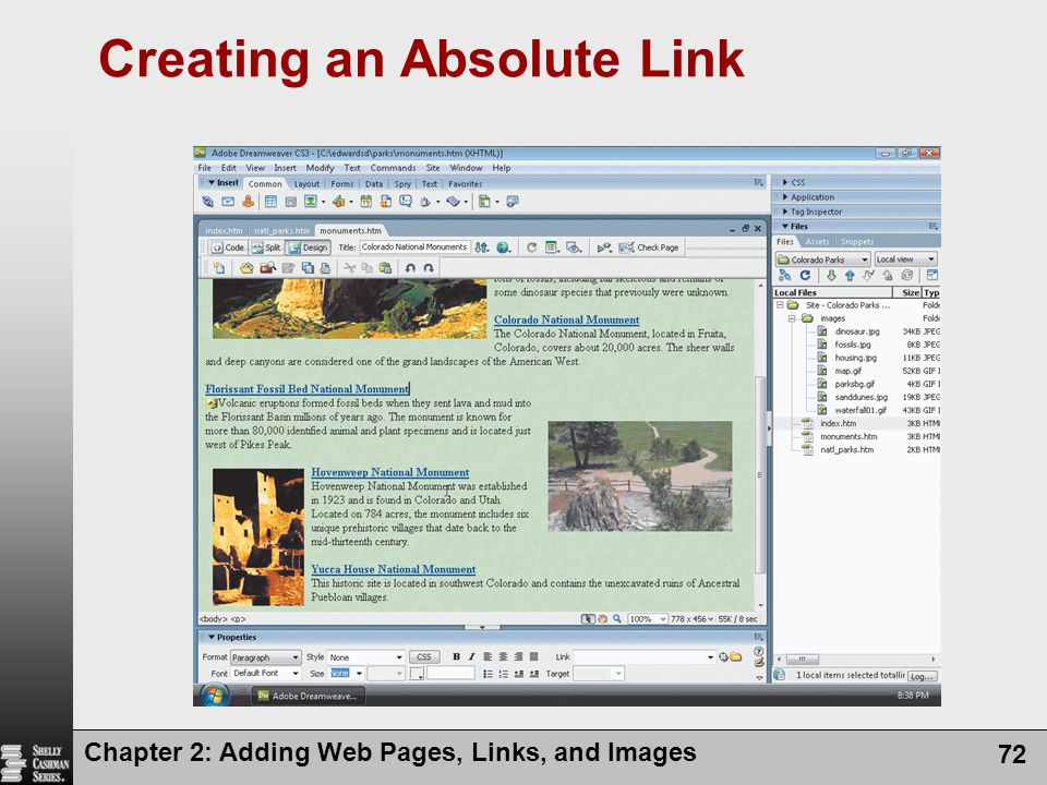 Chapter 2: Adding Web Pages, Links, and Images 72 Creating an Absolute Link