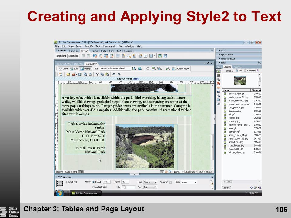 Creating and Applying Style2 to Text Chapter 3: Tables and Page Layout 106