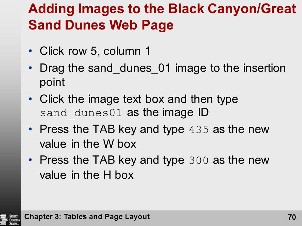 Chapter 3: Tables and Page Layout 70 Adding Images to the Black Canyon/Great Sand Dunes Web Page Click row 5, column 1 Drag the sand_dunes_01 image to the insertion point Click the image text box and then type sand_dunes01 as the image ID Press the TAB key and type 435 as the new value in the W box Press the TAB key and type 300 as the new value in the H box