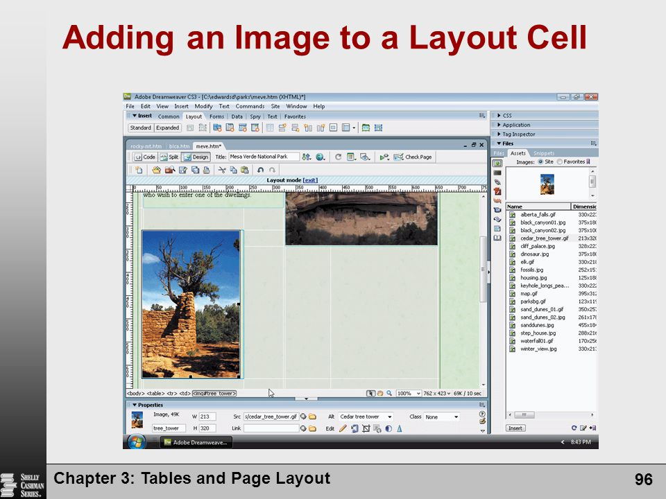 Chapter 3: Tables and Page Layout 96 Adding an Image to a Layout Cell
