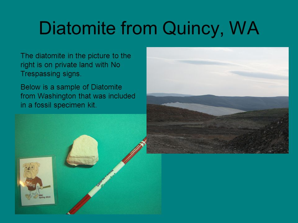 Diatomite from Quincy, WA The diatomite in the picture to the right is on private land with No Trespassing signs. Below is a sample of Diatomite from