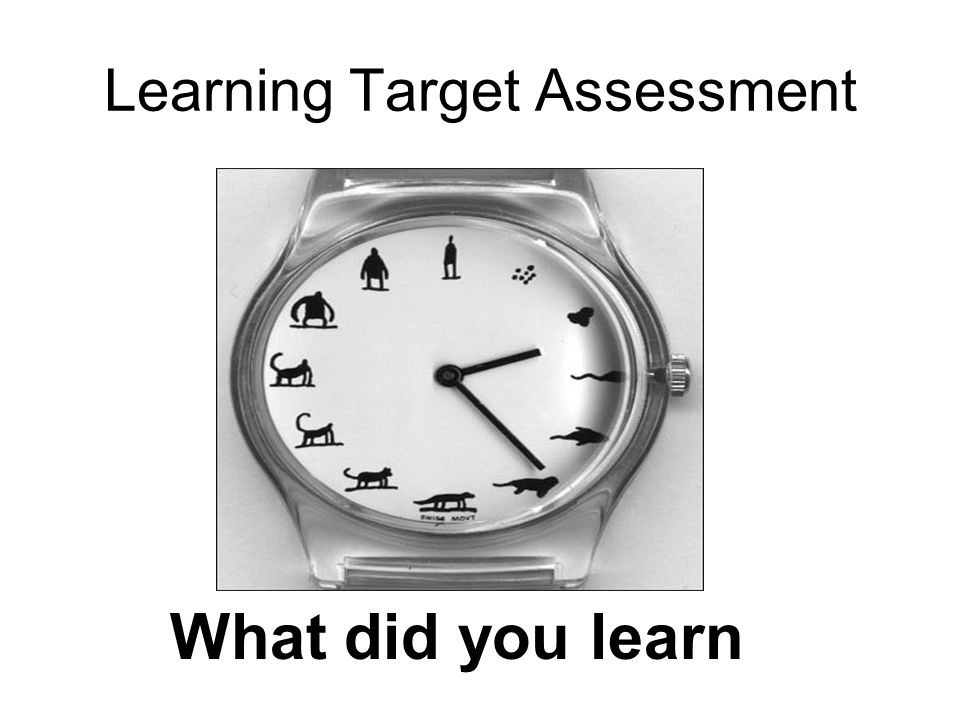 Learning Target Assessment What did you learn