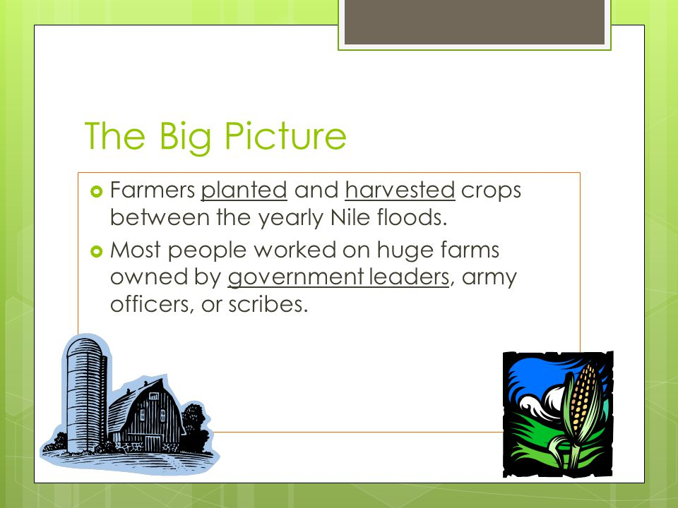 The Big Picture  Farmers planted and harvested crops between the yearly Nile floods.  Most people worked on huge farms owned by government leaders,