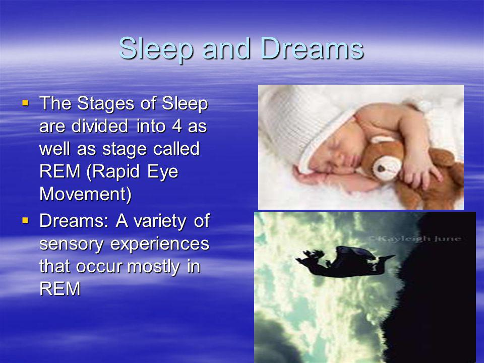 Sleep and Dreams  The Stages of Sleep are divided into 4 as well as stage called REM (Rapid Eye Movement)  Dreams: A variety of sensory experiences that occur mostly in REM