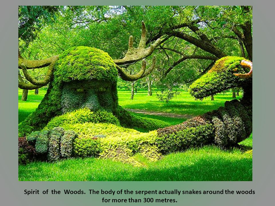 Spirit of the Woods. The body of the serpent actually snakes around the woods for more than 300 metres.