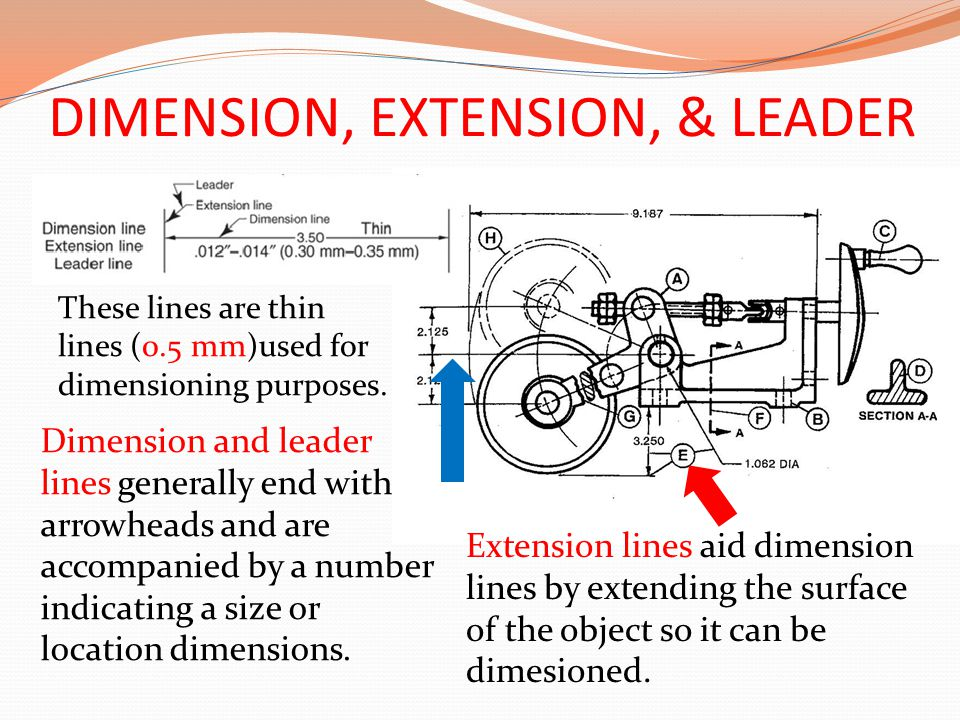DIMENSION, EXTENSION, & LEADER These lines are thin lines (0.5 mm)used for dimensioning purposes. Dimension and leader lines generally end with arrowh