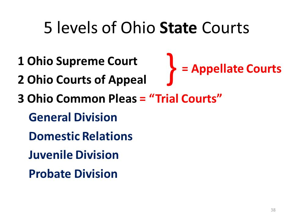5 levels of Ohio State Courts 1 Ohio Supreme Court 2 Ohio Courts of Appeal 3 Ohio Common Pleas = Trial Courts General Division Domestic Relations Juvenile Division Probate Division 38 } = Appellate Courts
