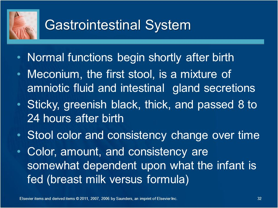 Gastrointestinal System Normal functions begin shortly after birth Meconium, the first stool, is a mixture of amniotic fluid and intestinal gland secr
