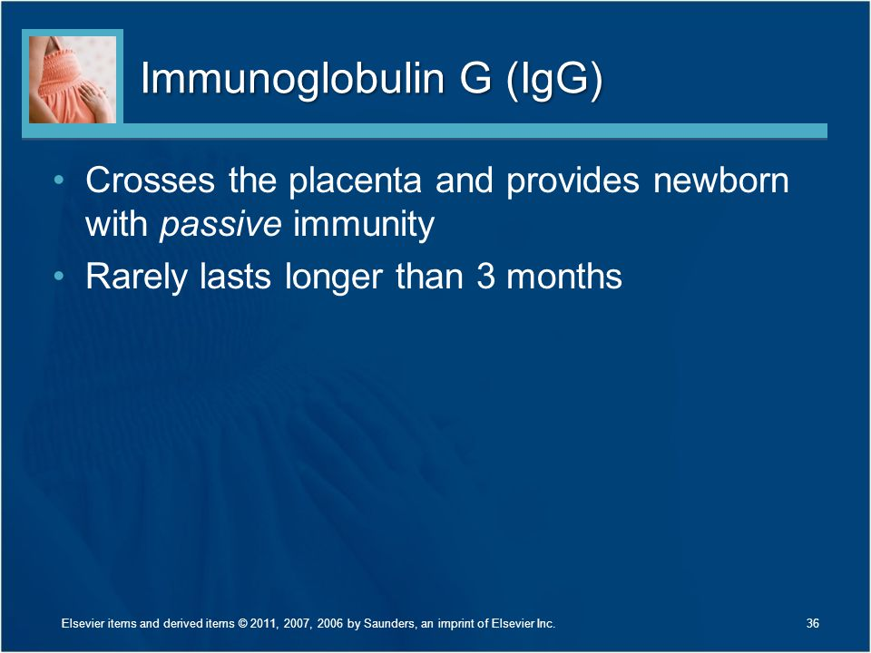Immunoglobulin G (IgG) Crosses the placenta and provides newborn with passive immunity Rarely lasts longer than 3 months 36Elsevier items and derived