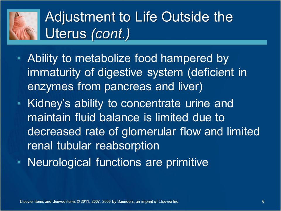Adjustment to Life Outside the Uterus (cont.) Ability to metabolize food hampered by immaturity of digestive system (deficient in enzymes from pancrea
