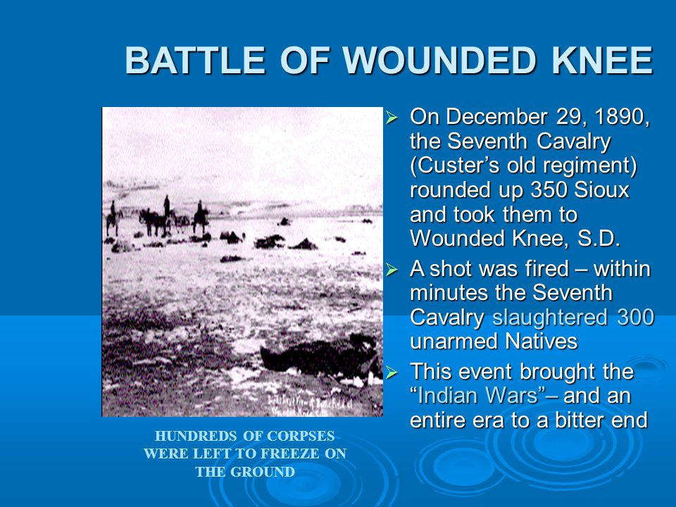 BATTLE OF WOUNDED KNEE BATTLE OF WOUNDED KNEE  On December 29, 1890, the Seventh Cavalry (Custer's old regiment) rounded up 350 Sioux and took them to Wounded Knee, S.D.