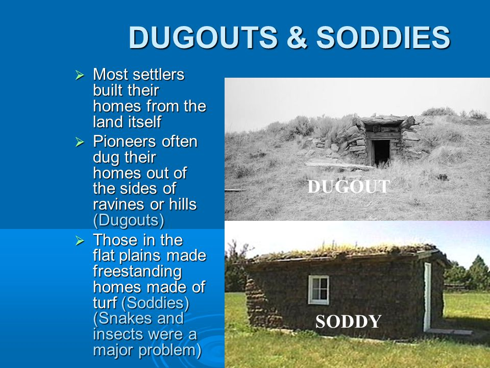 DUGOUTS & SODDIES  Most settlers built their homes from the land itself  Pioneers often dug their homes out of the sides of ravines or hills (Dugouts)  Those in the flat plains made freestanding homes made of turf (Soddies) (Snakes and insects were a major problem) DUGOUT SODDY