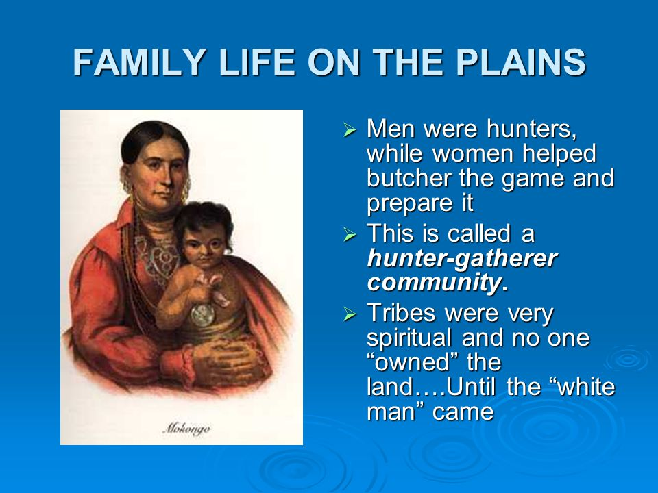 Why was the buffalo so important to the plains Indians.