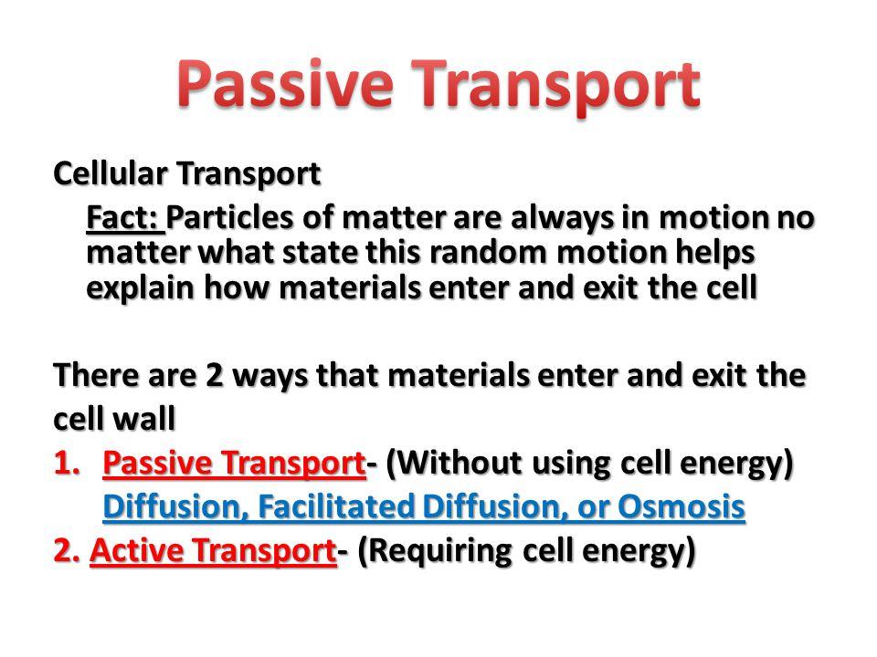 Active Transport 1.Protein Pumps 2. Endocytosis 3.