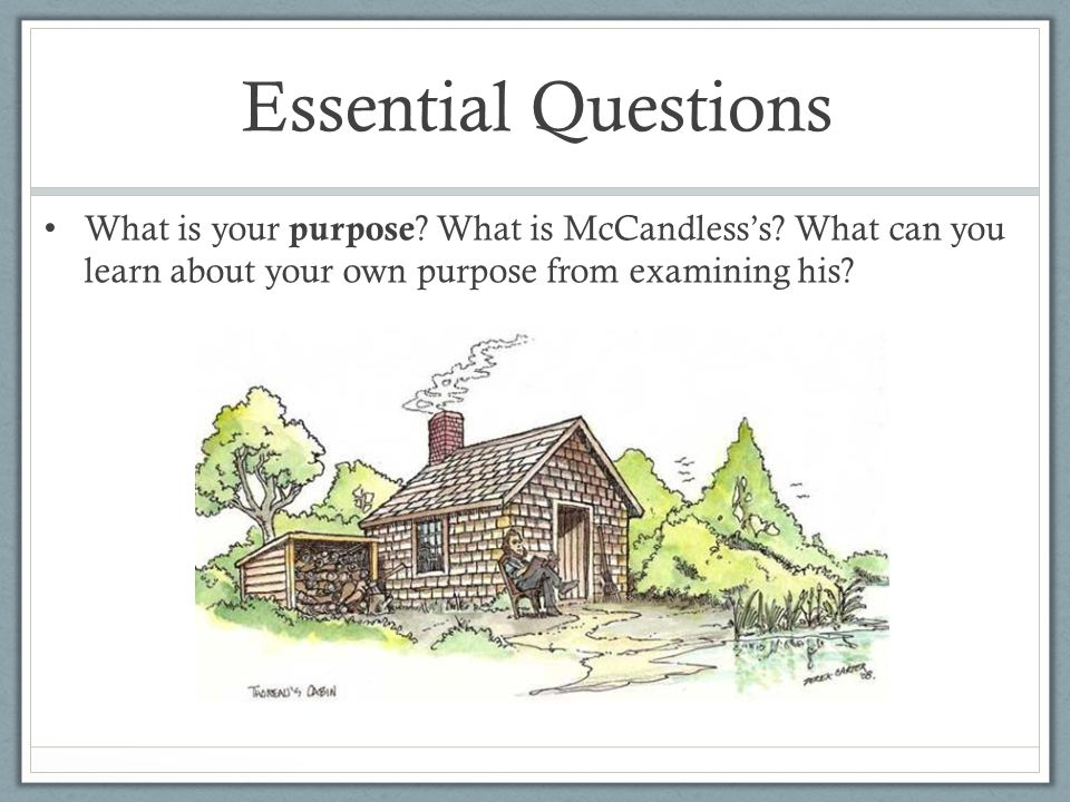 Essential Questions What is your purpose ? What is McCandless's? What can you learn about your own purpose from examining his?
