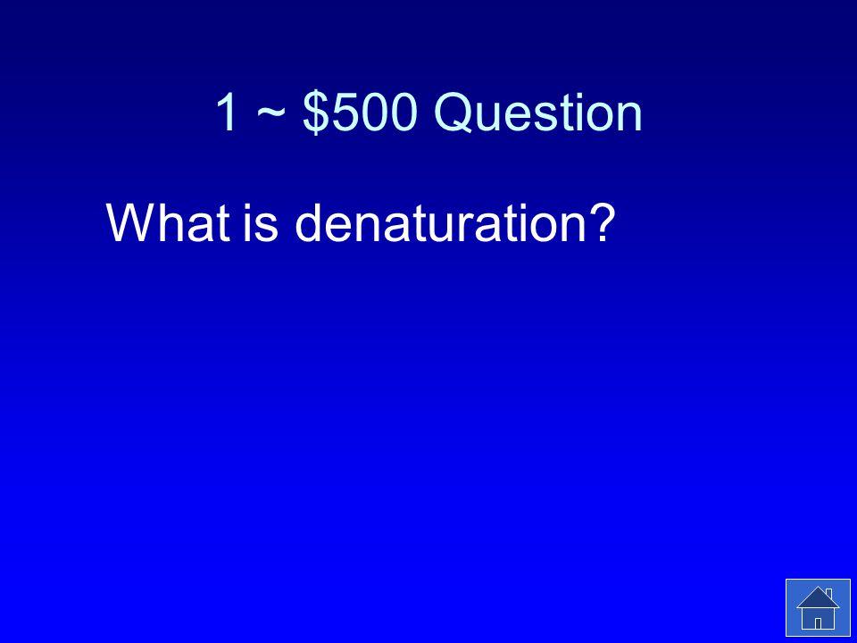 1 ~ $500 Answer