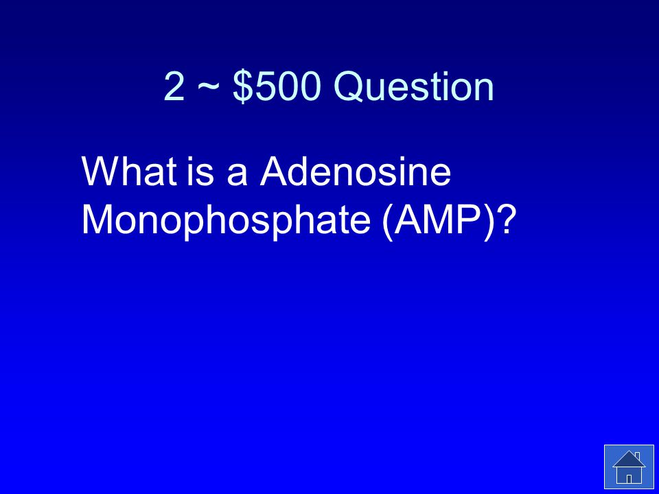 2 ~ $500 Answer Adenine Ribose 1 Phosphate Group