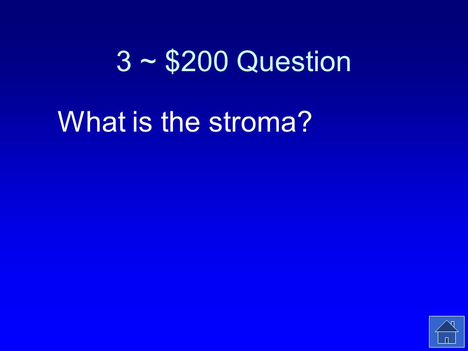 3 ~ $200 Answer The fluid surrounding the thylakoids in a chloroplast.