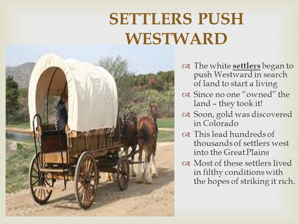 """SETTLERS PUSH WESTWARD  The white settlers began to push Westward in search of land to start a living  Since no one """"owned"""" the land – they took it!"""