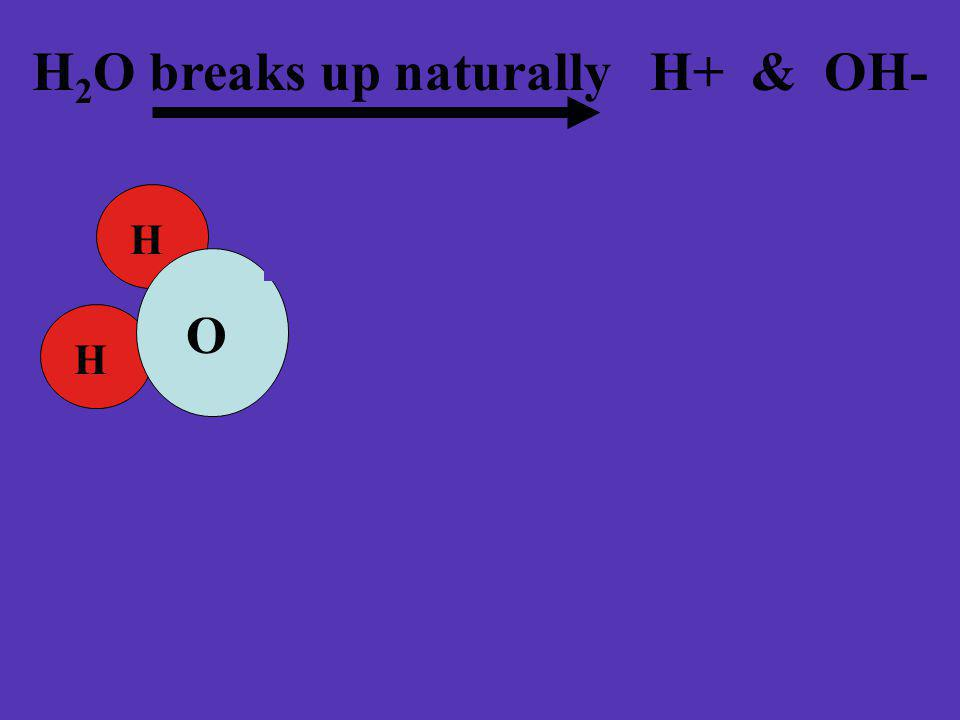 H 2 O breaks up naturally H+ & OH- H H O H H O + - & hydronium ion hydroxide ions