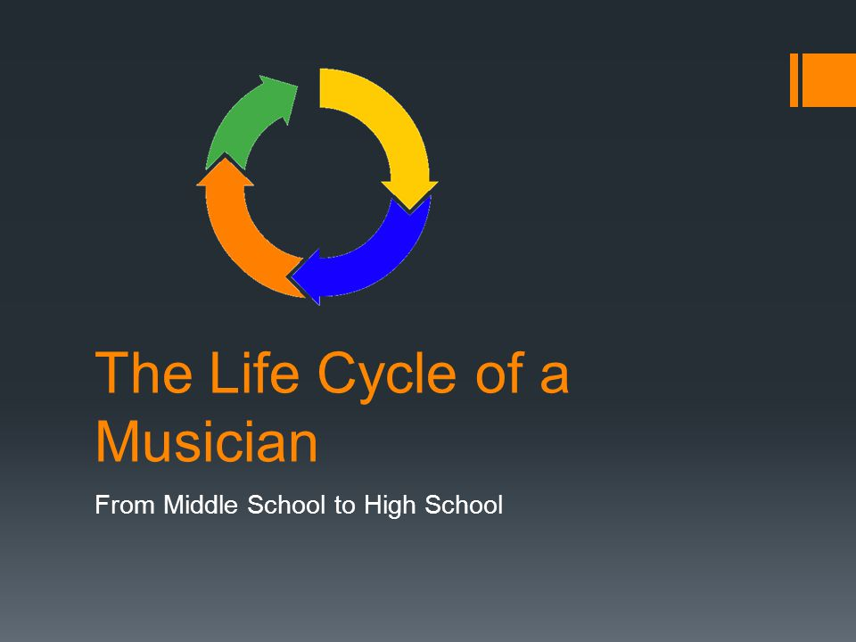 The Life Cycle of a Musician From Middle School to High School