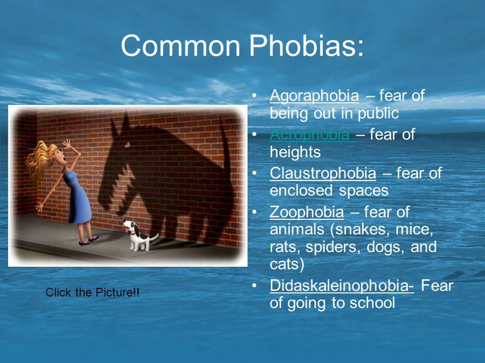 Common Phobias: Agoraphobia – fear of being out in public Acrophobia – fear of heightsAcrophobia Claustrophobia – fear of enclosed spaces Zoophobia –