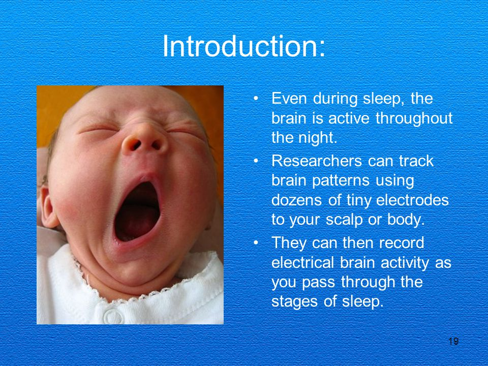 19 Introduction: Even during sleep, the brain is active throughout the night.