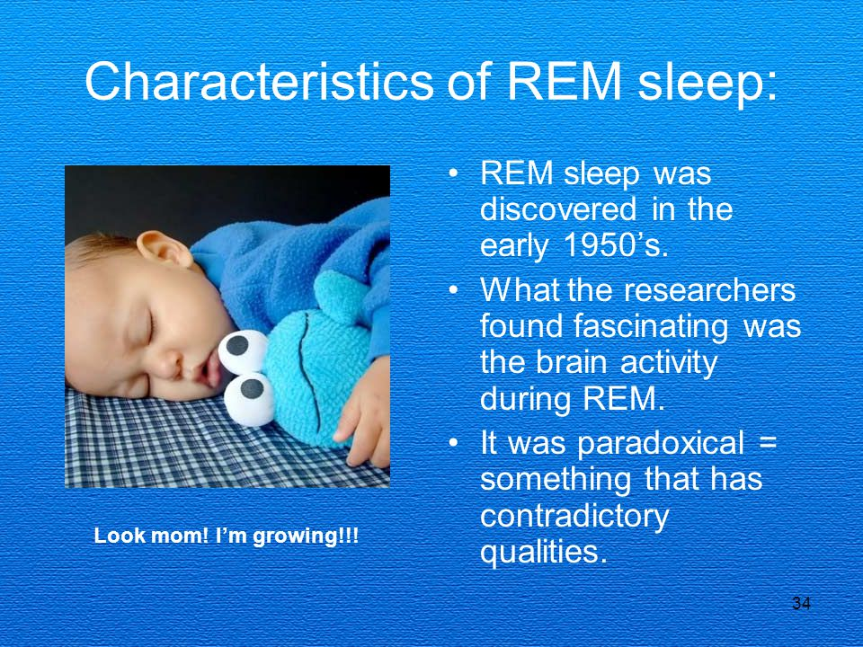 34 Characteristics of REM sleep: REM sleep was discovered in the early 1950's. What the researchers found fascinating was the brain activity during RE