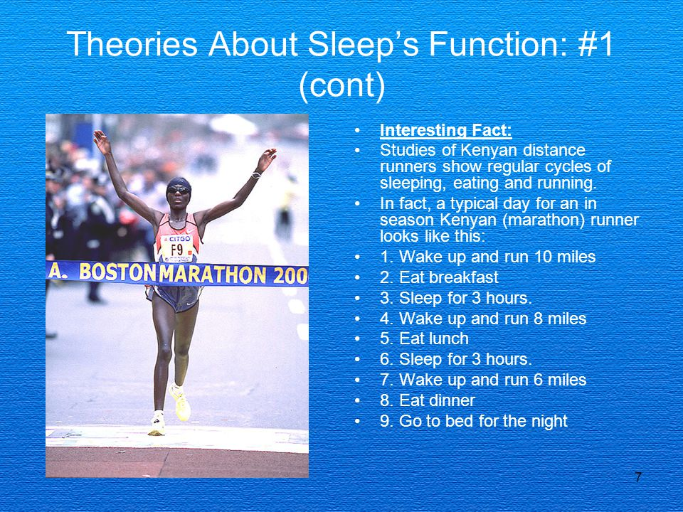 7 Theories About Sleep's Function: #1 (cont) Interesting Fact: Studies of Kenyan distance runners show regular cycles of sleeping, eating and running.