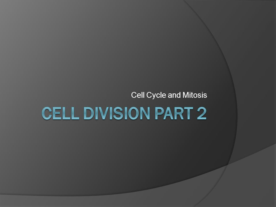  The Cell Cycle: life of a cell from first formation (from a dividing parent cell) to its own division into 2 cells.