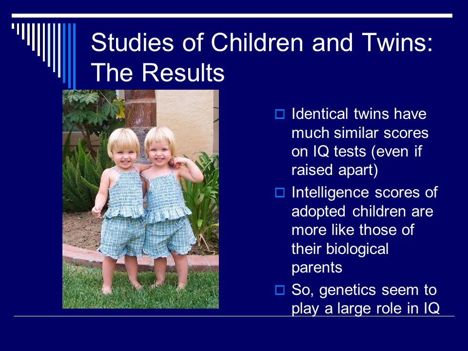 Studies of Children and Twins: The Results  Identical twins have much similar scores on IQ tests (even if raised apart)  Intelligence scores of adop