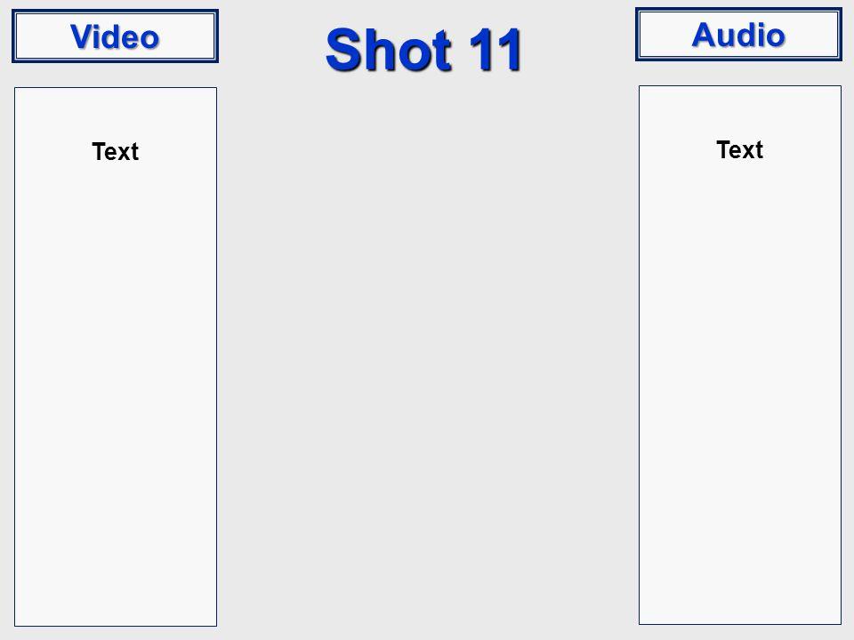 Video Audio Shot 11 Text