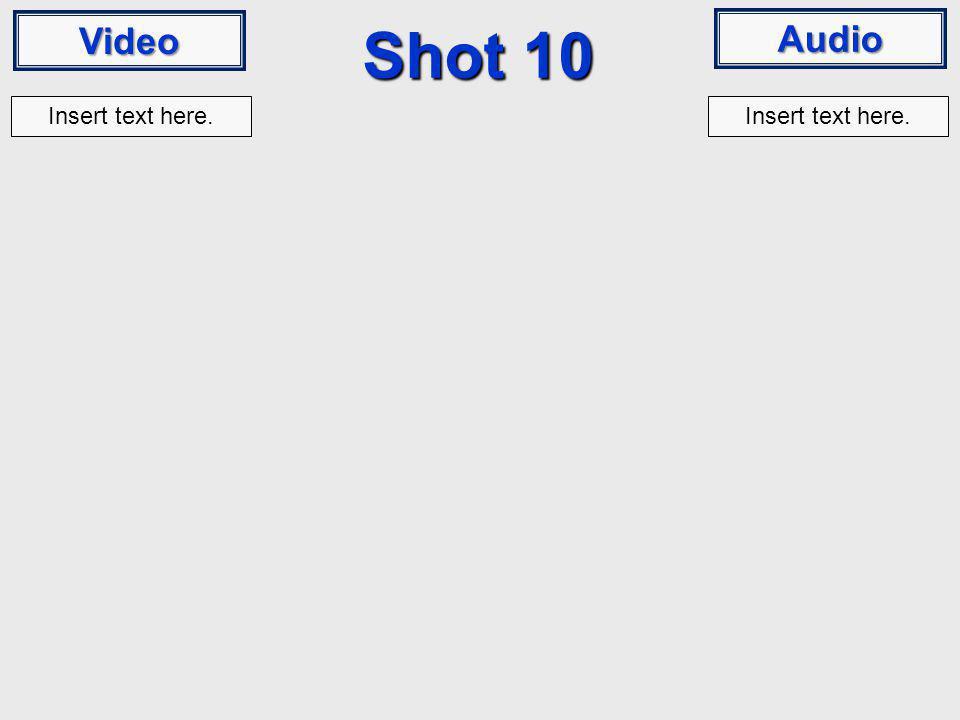 Video Audio Shot 10 Insert text here.