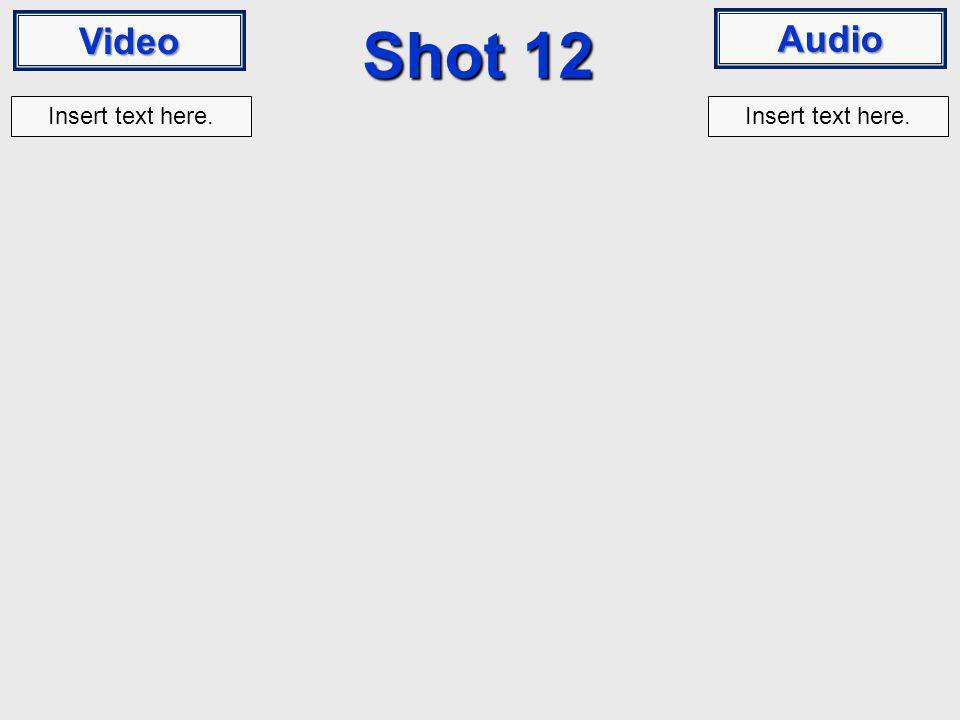 Video Audio Shot 12 Insert text here.