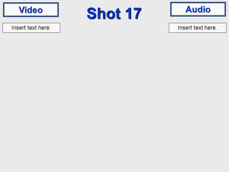 Video Audio Shot 17 Insert text here.