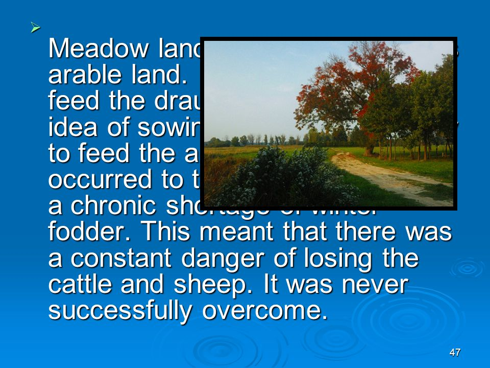 46  Each individual peasant strip was about one acre in size. It took about one day to plow a single strip. Crops and peasant field assignment were s