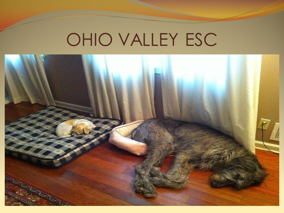 OHIO VALLEY ESC