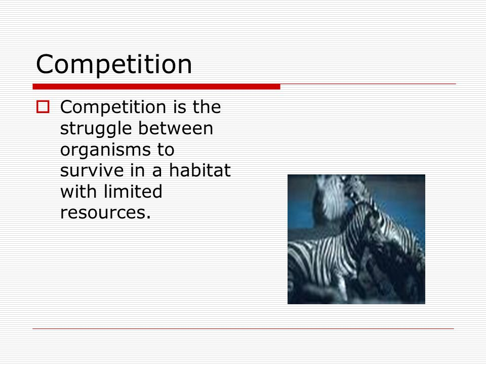 Competition CCompetition is the struggle between organisms to survive in a habitat with limited resources.