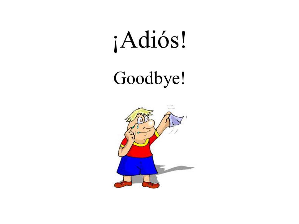 ¡Adiós! Goodbye!