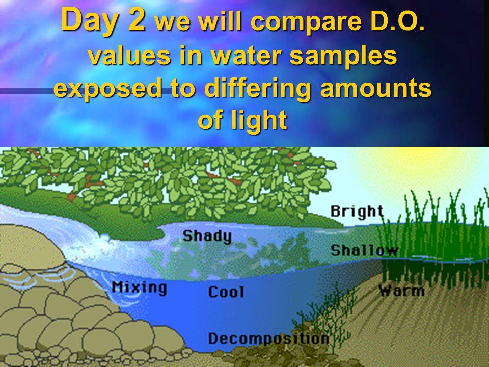 AP Lab #12 Dissolved Oxygen & Aquatic Primary Productivity Day 2