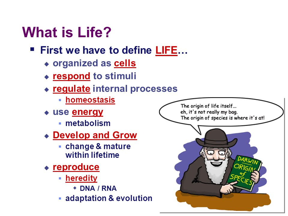 Terms to know  Biogenesis - all living things come from other living things.  Spontaneous generation – an early and now disproved hypothesis that st
