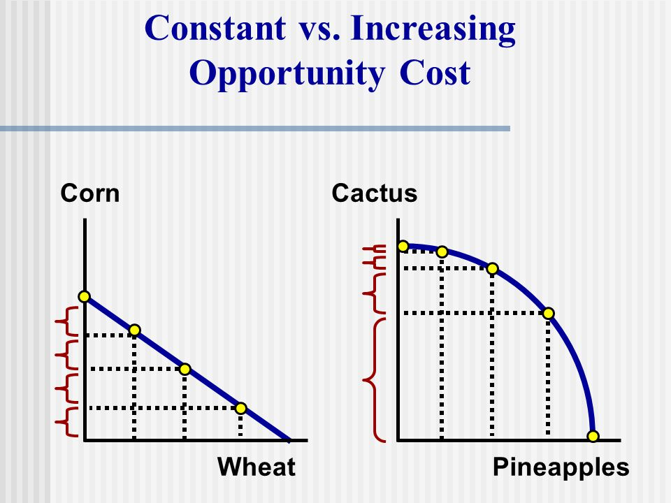 Constant vs. Increasing Opportunity Cost Corn Wheat Cactus Pineapples