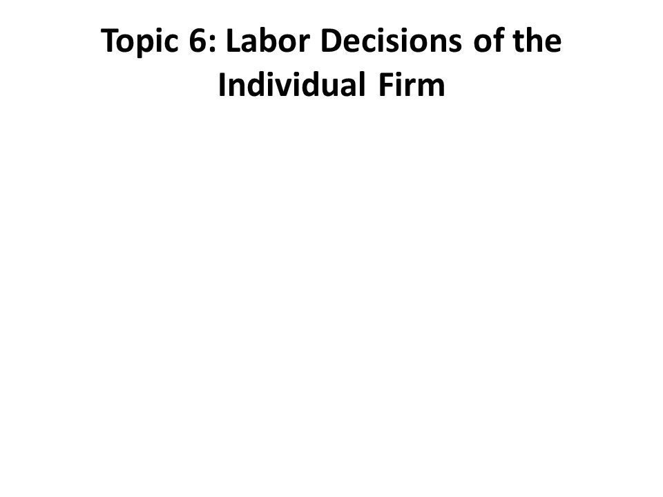 Topic 6: Labor Decisions of the Individual Firm