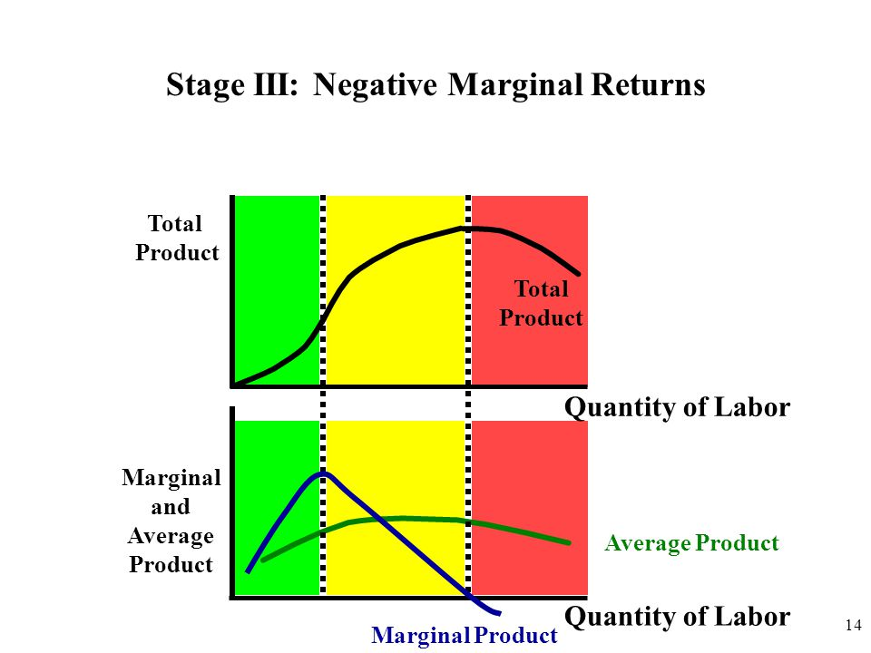 Total Product Quantity of Labor Marginal and Average Product Quantity of Labor Total Product Stage III: Negative Marginal Returns Marginal Product Ave