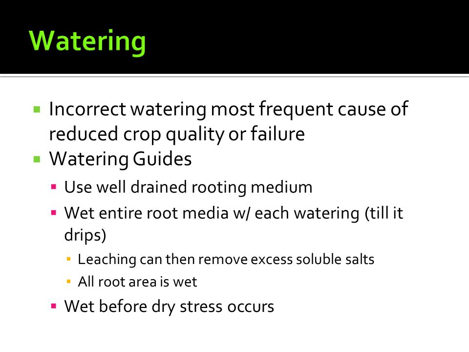  Incorrect watering most frequent cause of reduced crop quality or failure  Watering Guides  Use well drained rooting medium  Wet entire root media w/ each watering (till it drips) ▪ Leaching can then remove excess soluble salts ▪ All root area is wet  Wet before dry stress occurs