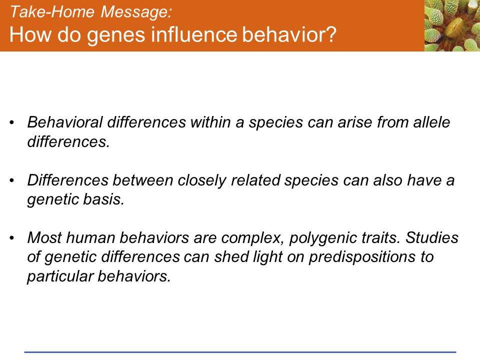 Take-Home Message: How do genes influence behavior.