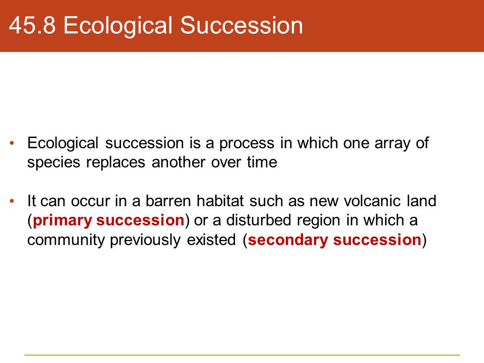 45.8 Ecological Succession Ecological succession is a process in which one array of species replaces another over time It can occur in a barren habita